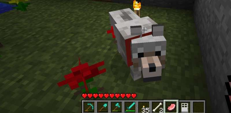 You wouldn't hit a dog, so why kill one in Minecraft? Why violence against virtual animals is an ethical issue