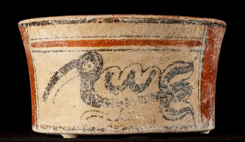 An ancient Maya ambassador's bones show a life of privilege and hardship