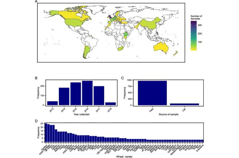 A new genomic tool for wheat rust researchers worldwide
