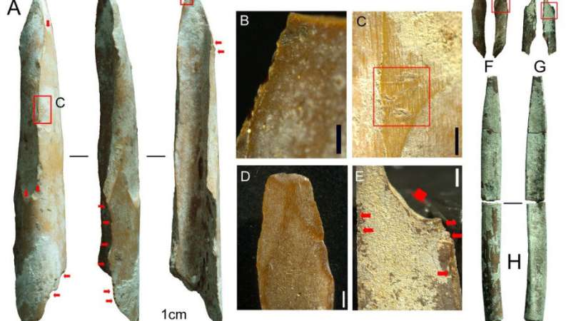 Bone tools found in the Kimberley among oldest in Australia