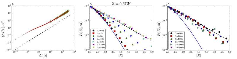 Challenging Einstein's picture of Brownian motion