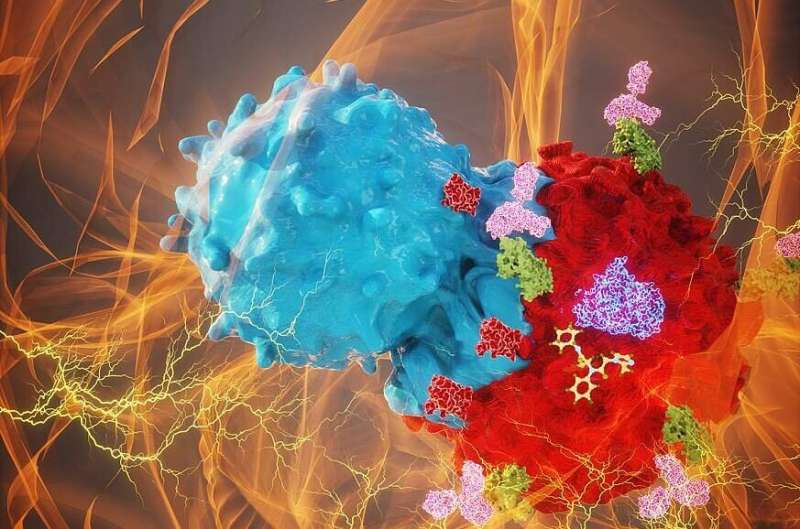 Combination treatment for common glioma type shows promise in mice