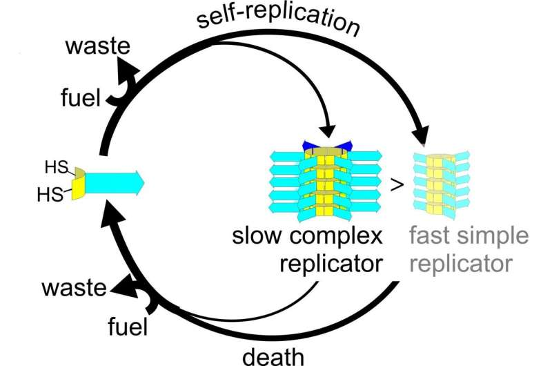 Death enables complexity in chemical evolution