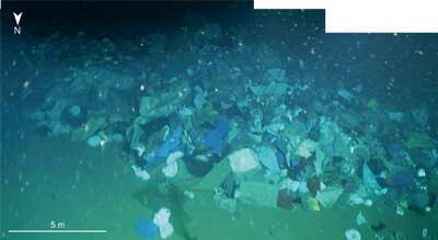 Deep-sea plastic accumulations by turbidity currents: NW South China sea