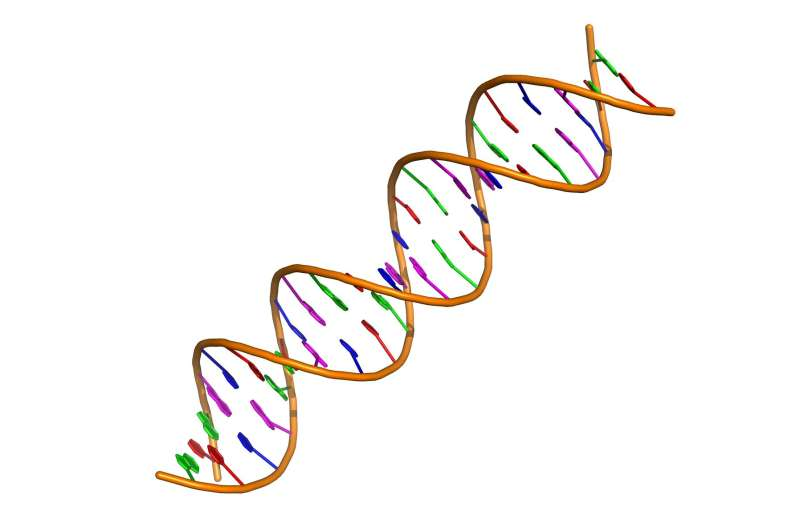 Distinctness of mental disorders traced to differences in gene readouts thumbnail