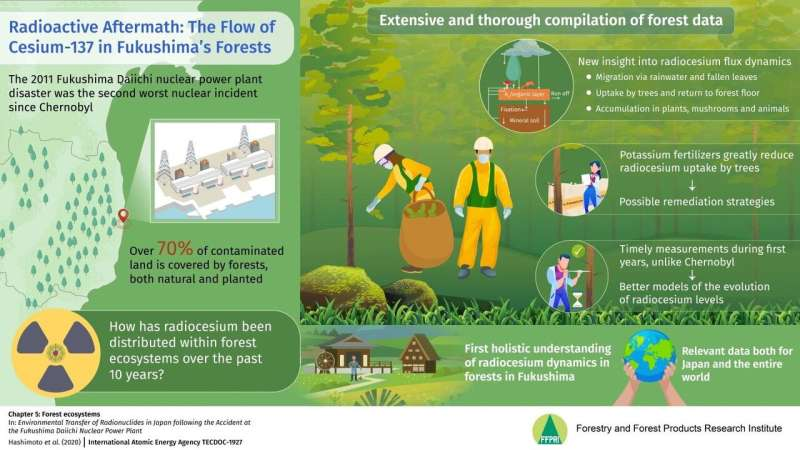 Dynamics of radiocesium in forests after the Fukushima disaster: Concerns and some hope