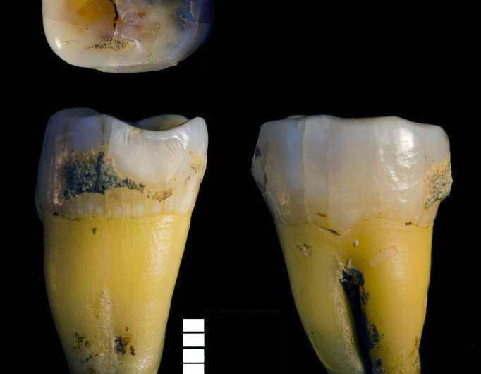 Genomes of the earliest Europeans