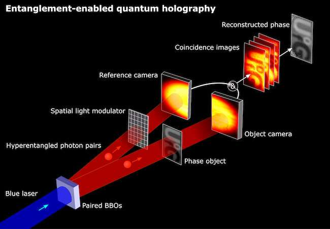 Holography 'quantum leap' could revolutionise imaging