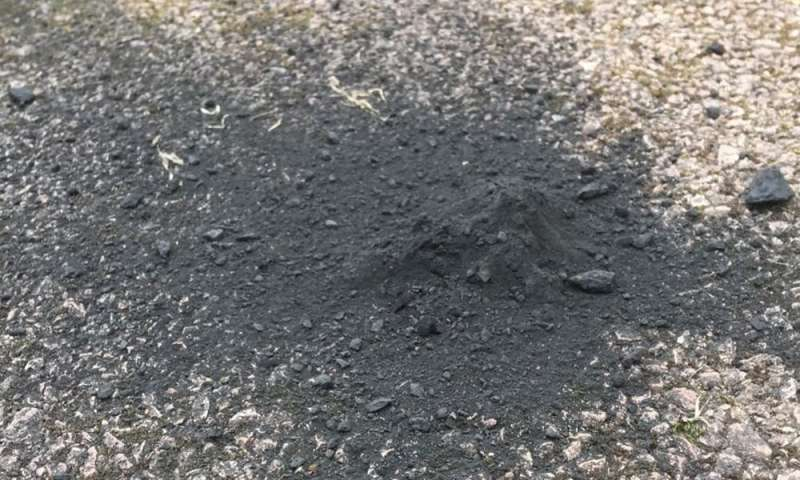 How scientists found rare fireball meteorite pieces on a driveway – and what they could teach us