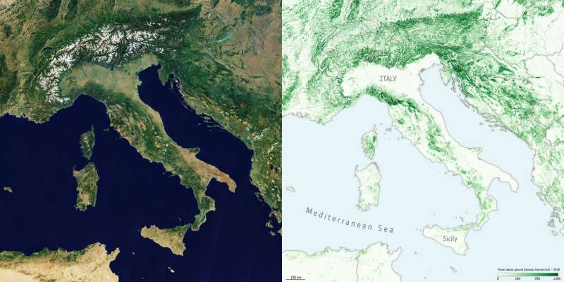 Maps to improve forest biomass estimates