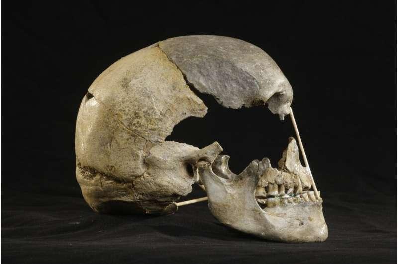 Neanderthal ancestry identifies oldest modern human genome