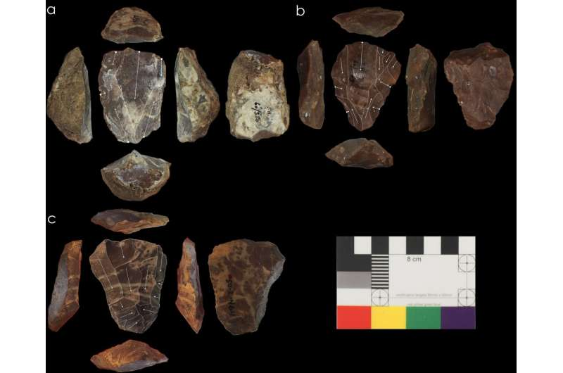 Neanderthals and Homo sapiens used identical Nubian technology