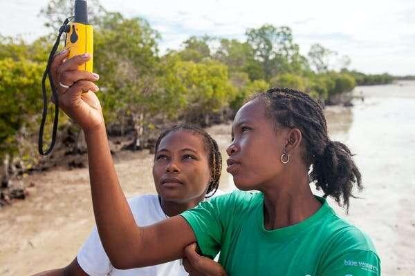 Nueva herramienta de mapeo de manglares pone la conservación al alcance de las comunidades costeras