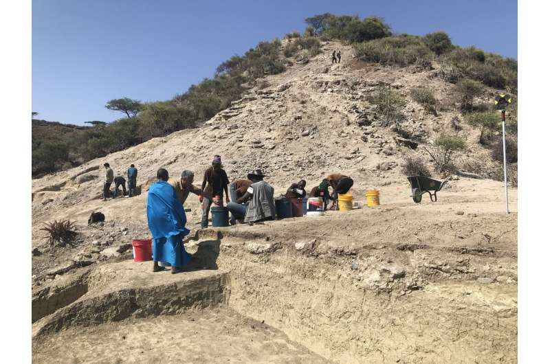 Oldest hominins of Olduvai Gorge persisted across changing environments