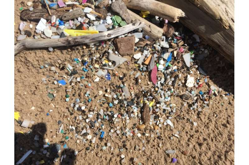 Paper without the microplastics