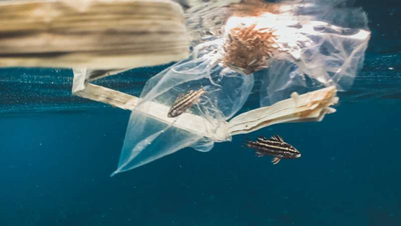 Recommendations for regional action to combat marine plastic pollution