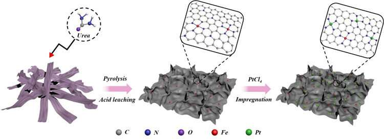 Scientists propose novel bifunctional catalysts on biomass-derived carbon