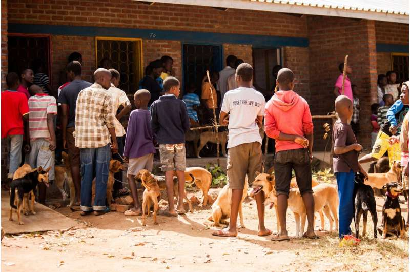 Smart vaccine scheme quick to curb rabies threat in African cities