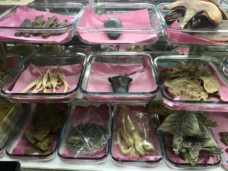 Species traded legally through Hong Kong with inadequate traceability