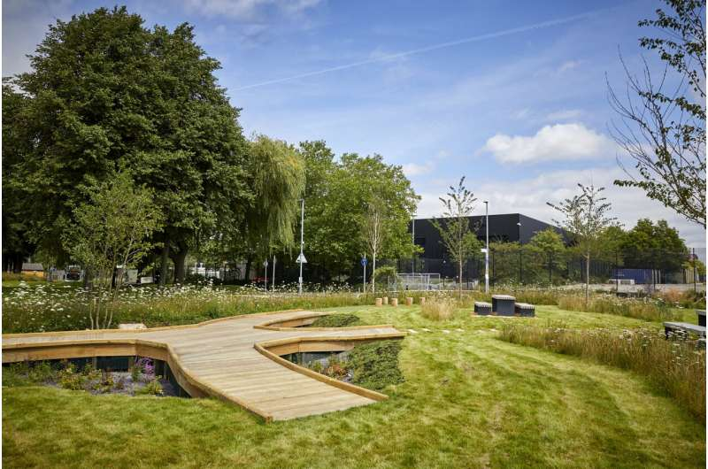 Sponge parks and vertical gardens – how cities are using nature to overcome extreme weather