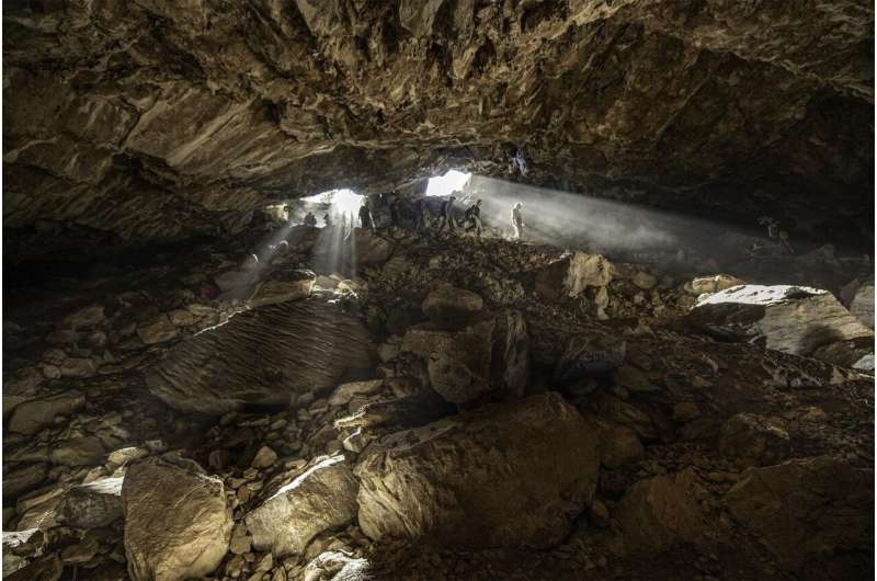 Stone Age black bears didn't just defecate in the woods - they did it in a cave too