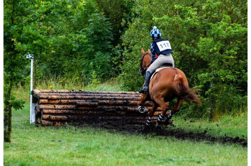 Study demonstrates the need to monitor the bit area of event horses