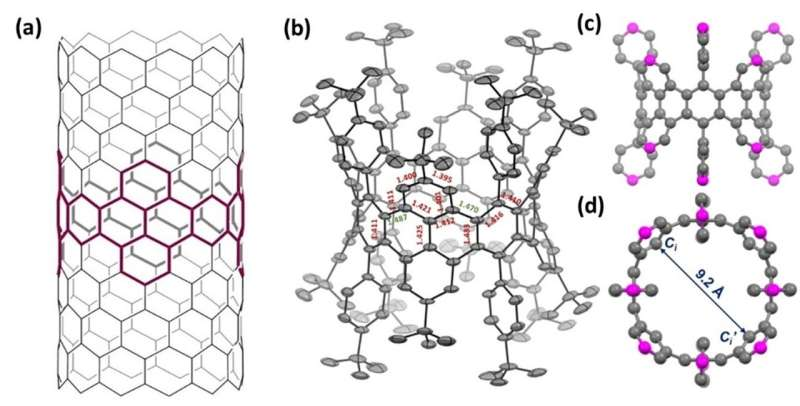 Synthesis of a sidewall fragment of a (12,0) carbon nanotube
