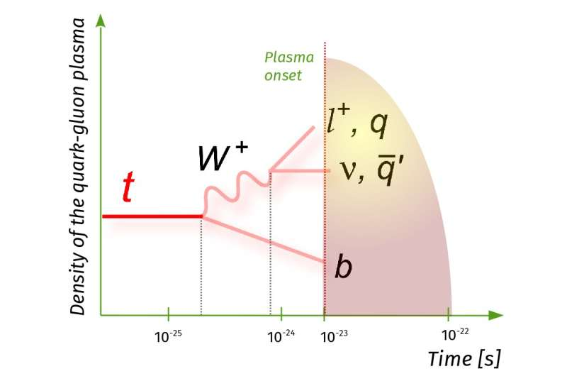 The first evidence of top quark production in nucleus-nucleus collisions