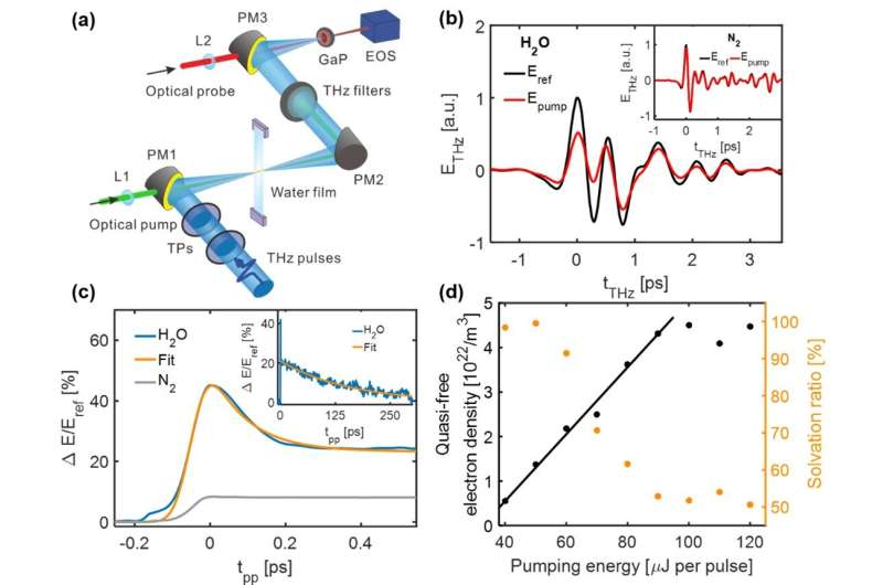 THz spectroscopy tracks electron solvation in photoionized water