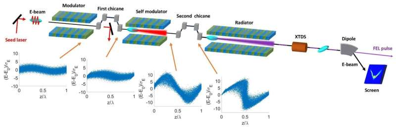 Scientists propose novel self-modulation scheme in seeded free-electron lasers