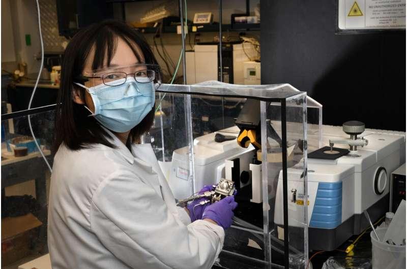 Study Reveals Platinum's Role in Clean Fuel Conversion