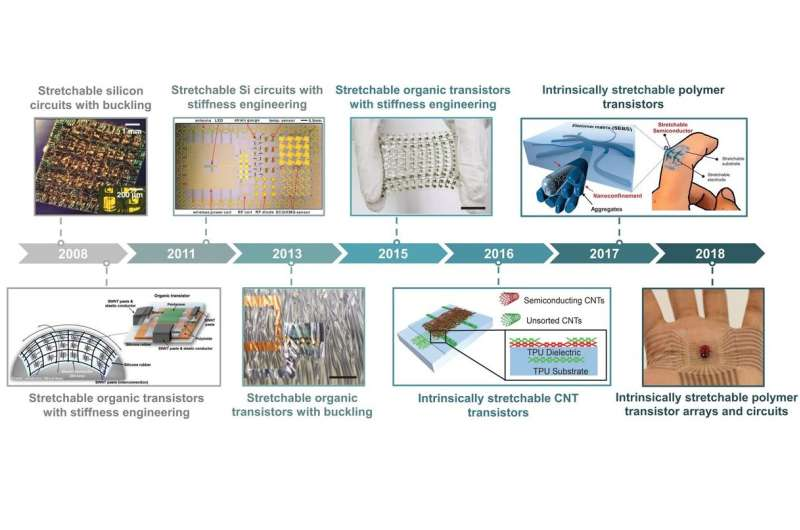 Researchers review advancements in the development of stretchable transistors