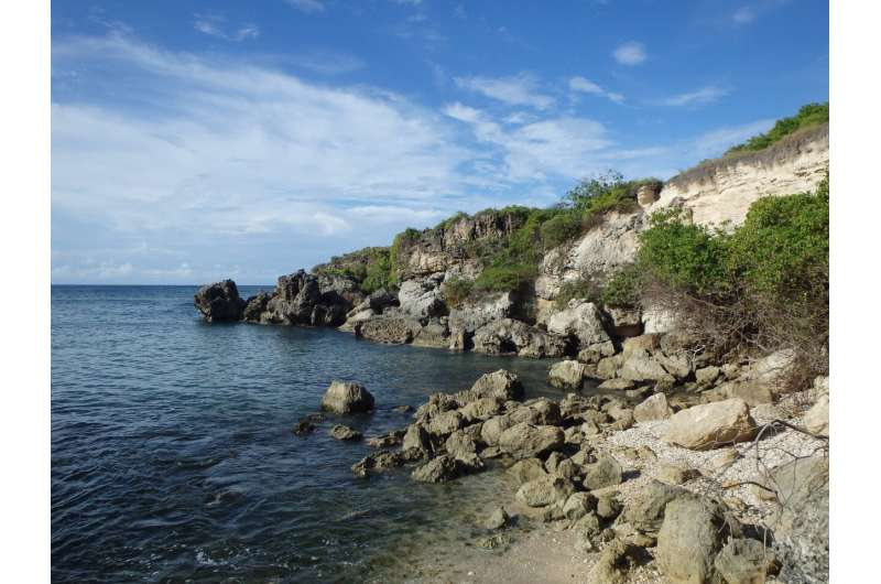 Neglected species—conserving reptiles on the Caribbean critical list