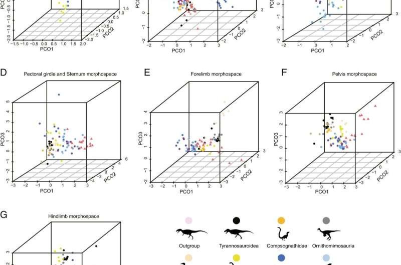 Climate change influences biodiversity evolution of birds: study