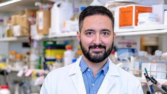 Understanding epigenetic regulators in neurodevelopmental diseases and cancer