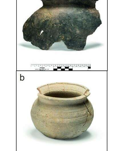 800-year-old medieval pottery fragments reveal Jewish dietary practices