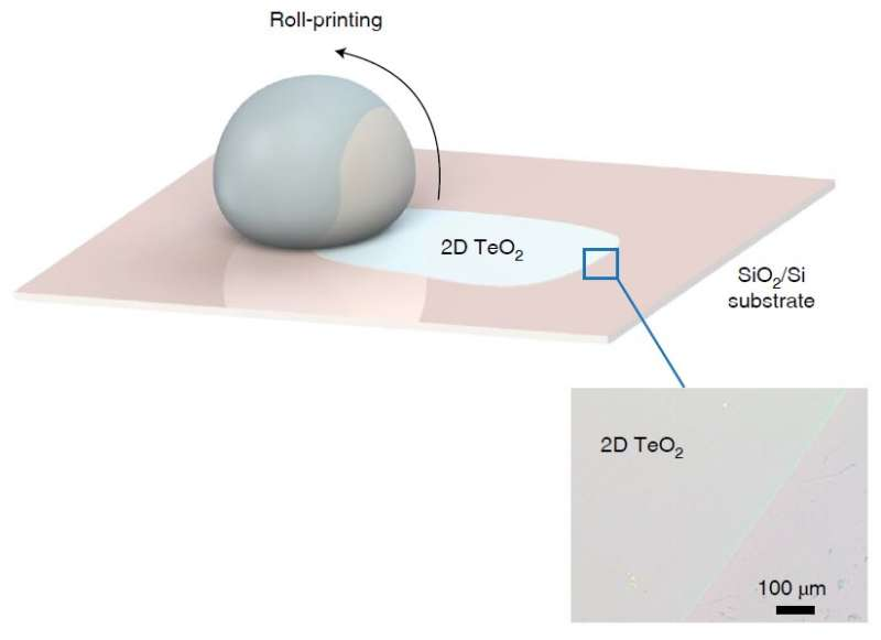 A new, positive approach could be the key to next-generation, transparent electronics