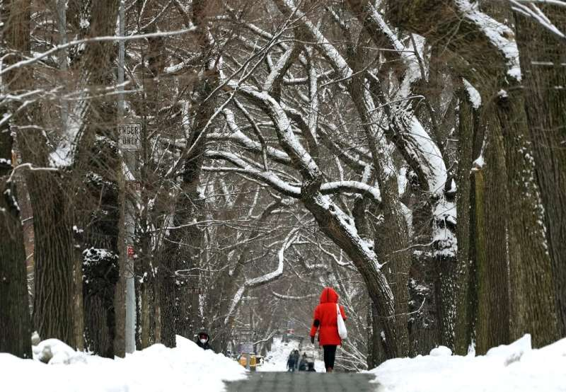 A tree-lined street near Central Park in New York's Manhattan after a snow storm last week
