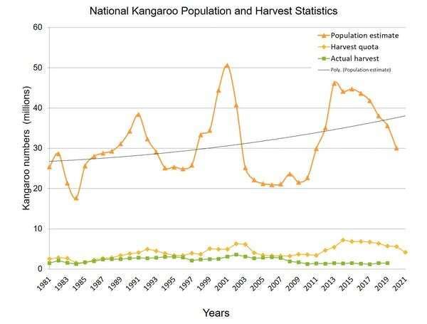 Una prohibición estadounidense del cuero de canguro sería un desastre para el bienestar animal y una oportunidad agrícola perdida