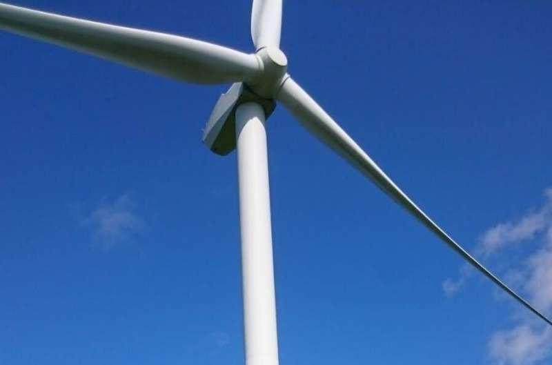 Common pipistrelle bats attracted to wind turbines