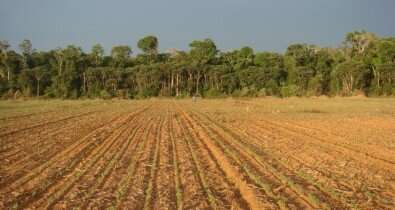 Deforestation favors an increase in the diversity of antibiotic-resistant soil bacteria