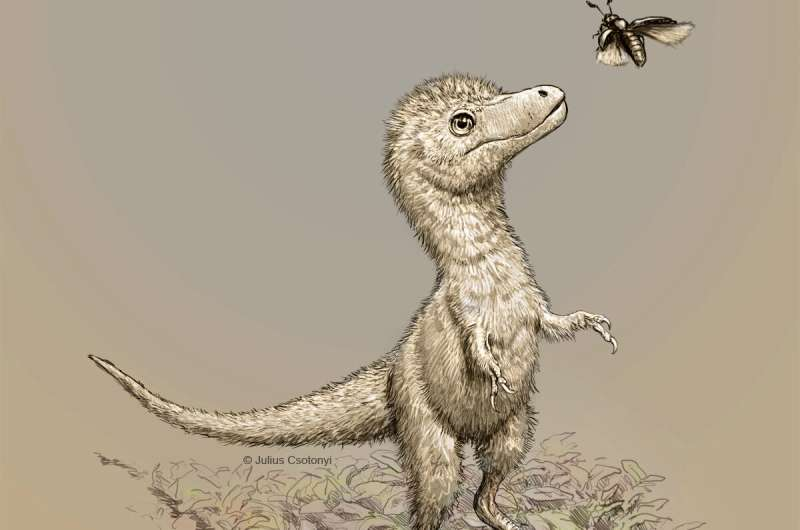 Dinosaur embryo find helps crack baby tyrannosaur mystery