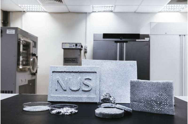Engineers develop eco-friendly technique to upcycle metal waste into multi-purpose aerogels