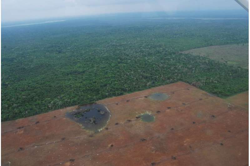 NASA images reveal important forests and wetlands are disappearing in Belize