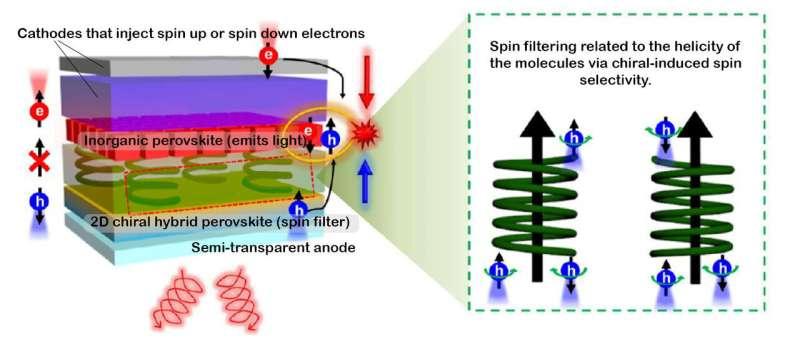 New perovskite LED emits a circularly polarized glow