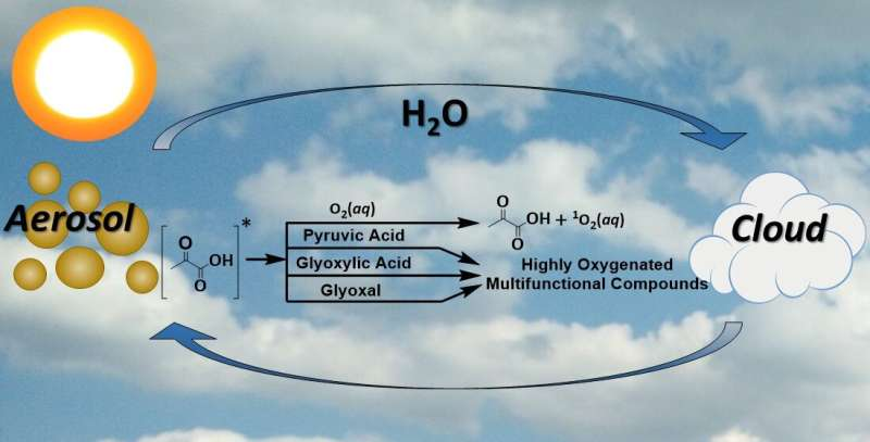 2-Oxocarboxylic Acids Provide a Link to the Formation of Radicals and Reactive Oxygen Species in Atmospheric Particles