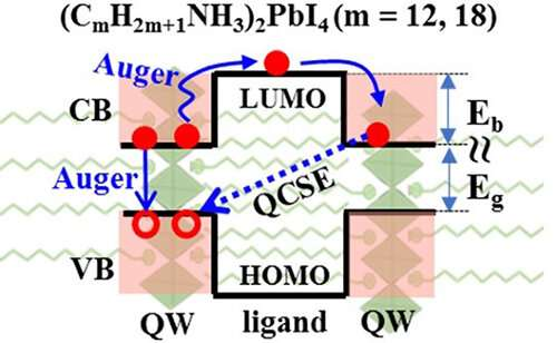 Study reveals auger-assisted electron transfer mechanism between adjacent quantum wells in 2D layered perovskites