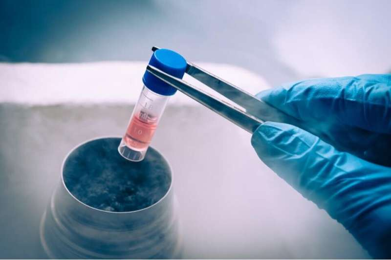 Researchers report promising results in trials to find new methods of stem cell delivery