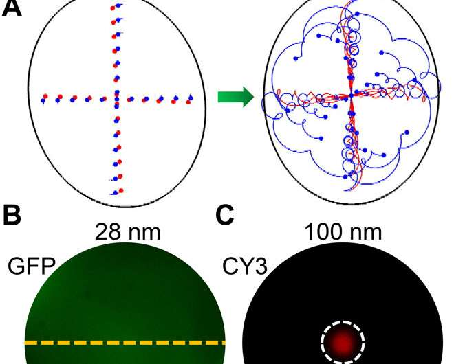 Acoustofluidic centrifuge for nanoparticle enrichment and assortment