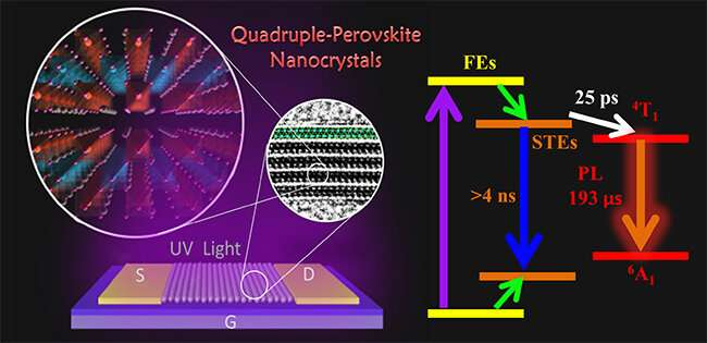Scientists reveal dynamic mechanism of lead-free quadruple perovskite nanocrystals